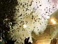 LFO 2016 Queen+Adam Lambert --032